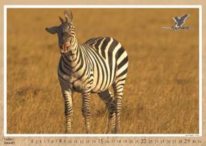 kalendar2012-nahled2_Page_02