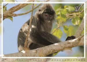 kalendar2012-nahled2_Page_07