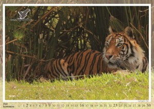 kalendar2012-nahled2_Page_10