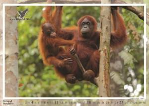 kalendar2012-nahled2_Page_12